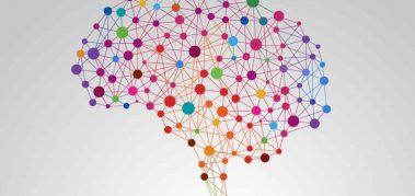 Cómo reducir el daño cerebral que produce la forma de trabajo actual